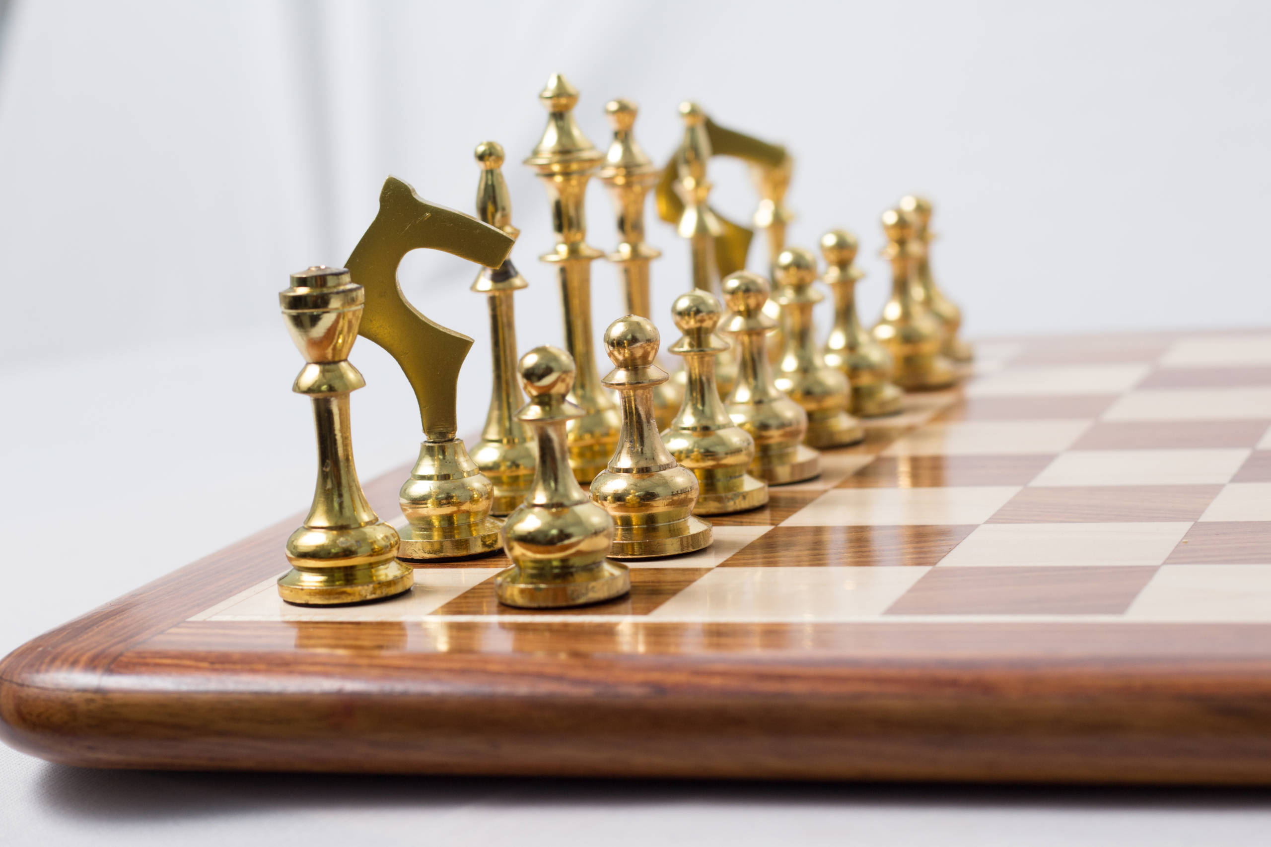 The different pieces in a chess game