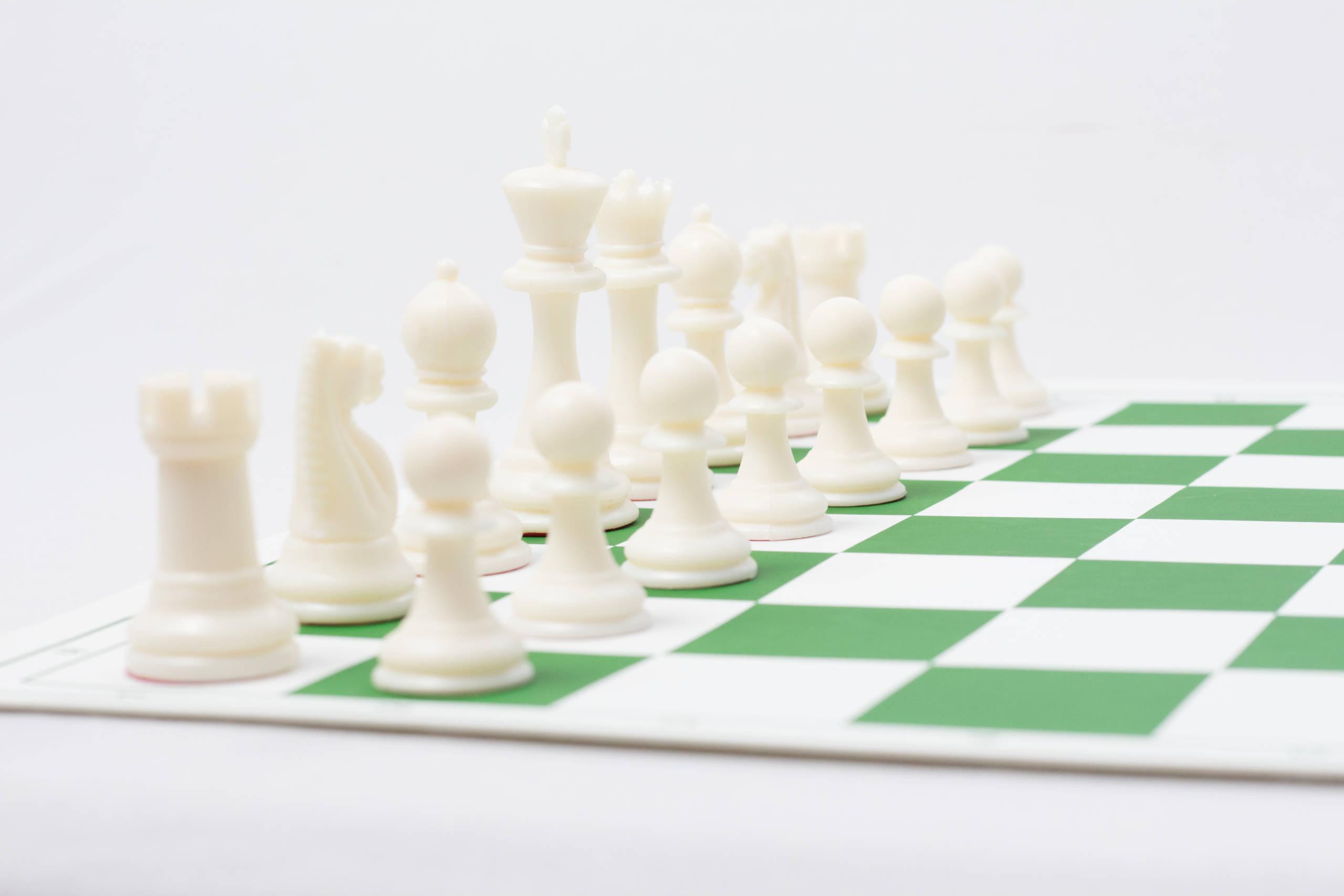 Professional Chess Combo Kit